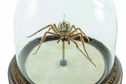 Insect Lab Authentic Wolf Spider Watch Hybrid Robot Collecti