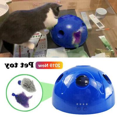 Pop N' Interactive Motion Mouse Electronic Pet Toy