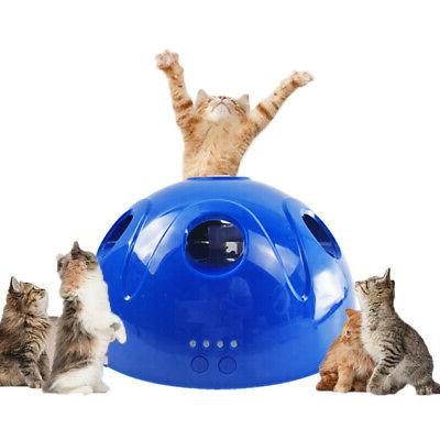 Pop N' Interactive Mouse Electronic Pet Toy